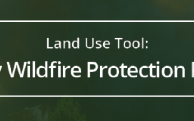 Larkspur Community Wildfire Protection Plan
